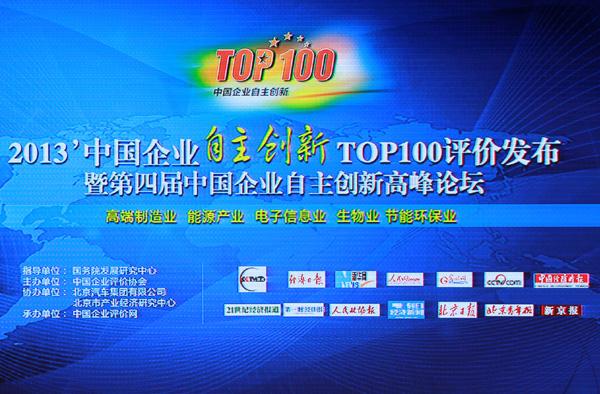 2013中国企业自主创新十大人物